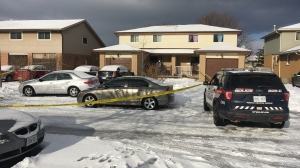 Waterloo Regional Police are investigating a fatal shooting in Kitchener's southwest end. (Terry Kelly/CTV Kitchener) (Dec. 15, 2019)