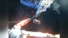 U.S. Coast Guard rescues Canadian fisherman