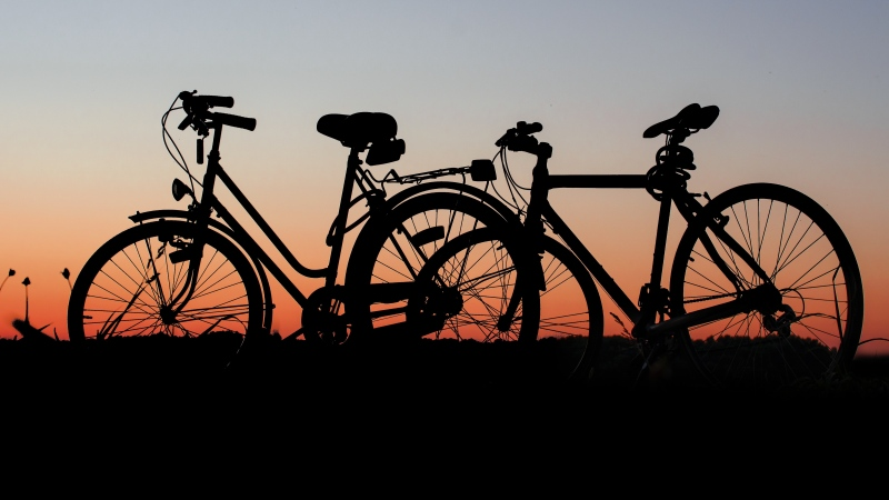 Silhouette of bicycles on grass