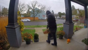 Mounties in Surrey are warning the public after a recent spike in parcel thefts from front porches and doorsteps in the city over the past couple of weeks.