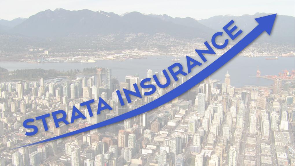 Strata Insurance