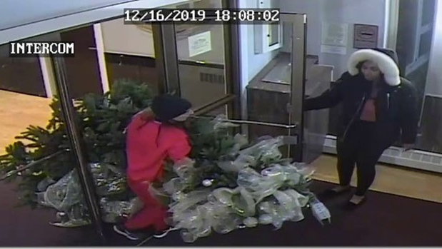 Halifax Regional Police are looking for two women suspected of stealing a decorated Christmas tree from the lobby of an apartment building. (Halifax Regional Police)
