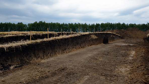 A view of the Scythian Amazon burial mound excavation (Institute of Archeology of the Russian Academy of Sciences)