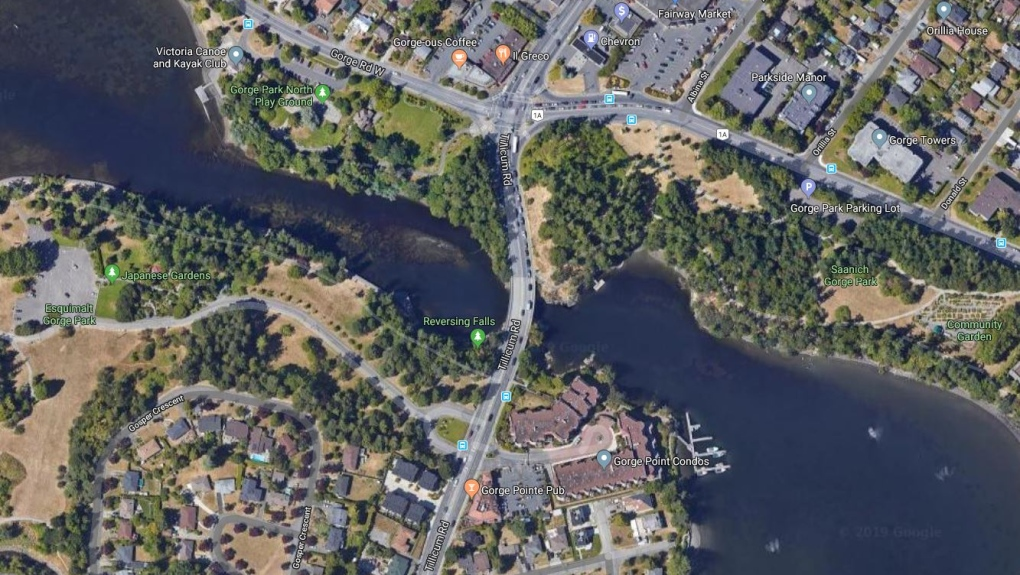 Victoria Saanich Police Rescue Man And Dog From Sinking Boat