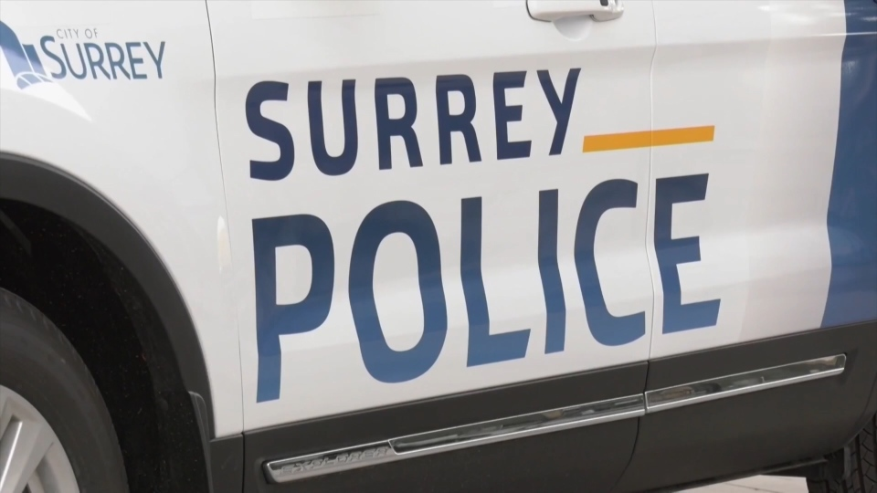 Surrey police transition