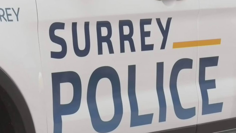 Surrey police consultations released