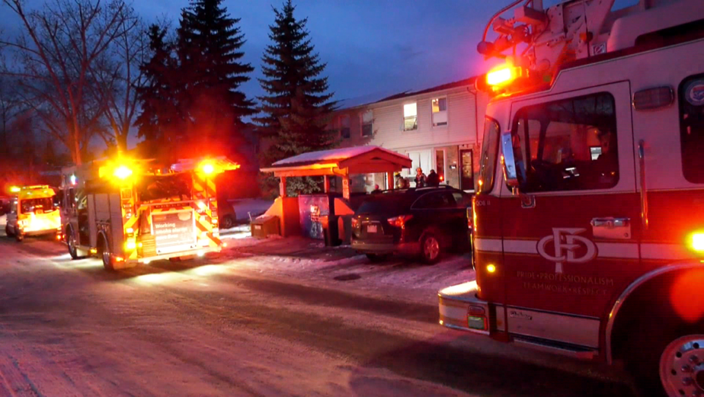 Tortoise Heating Lamp Leads To Smoke Filled Home In Southeast Calgary Ctv News
