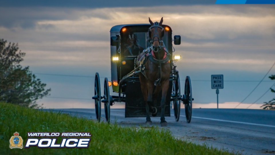 WRPS horse buggy