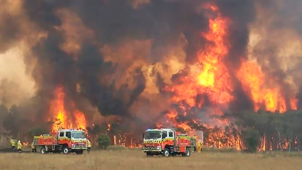 After more than 240 days, Australia's New South Wales is finally free from  bushfires | CTV News