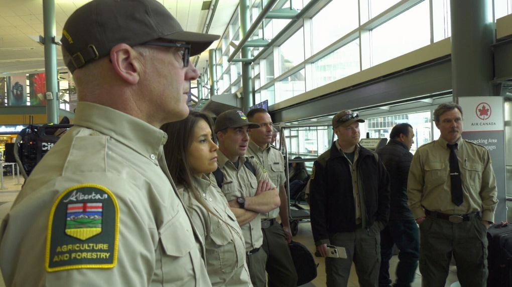 Alberta firefighters ready to return favour to Australia