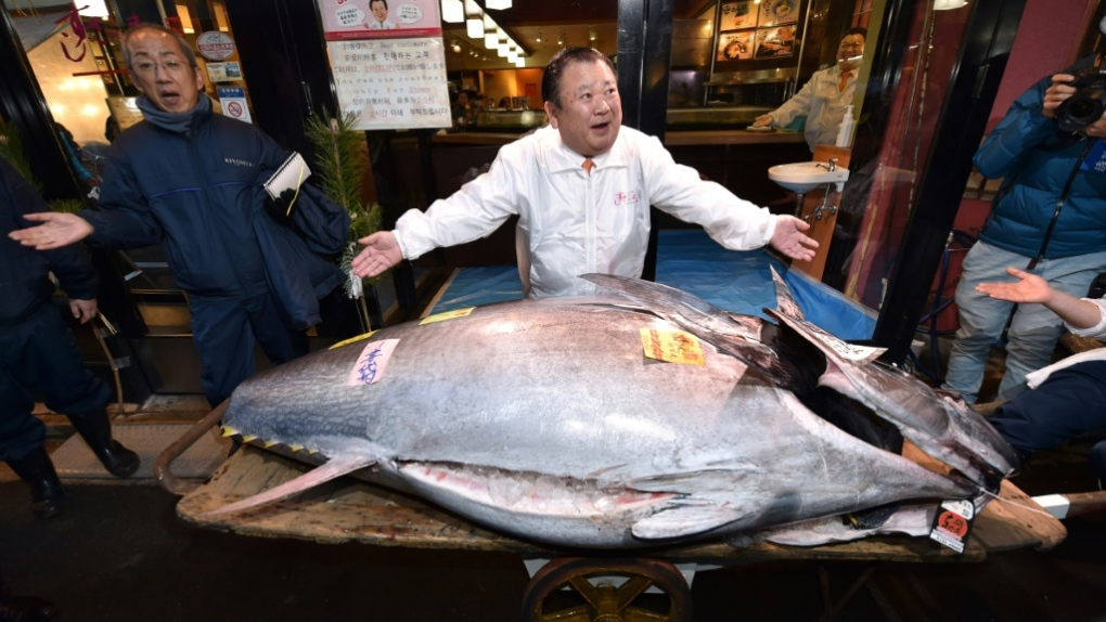 Single tuna sells for €1.6m at auction in Japan