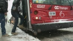 OC Transpo route changes take effect