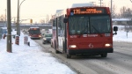 OC Transpo's added bus service begins