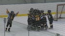 Quikcard Edmonton Minor Hockey week tournament. (CTV News Edmonton)