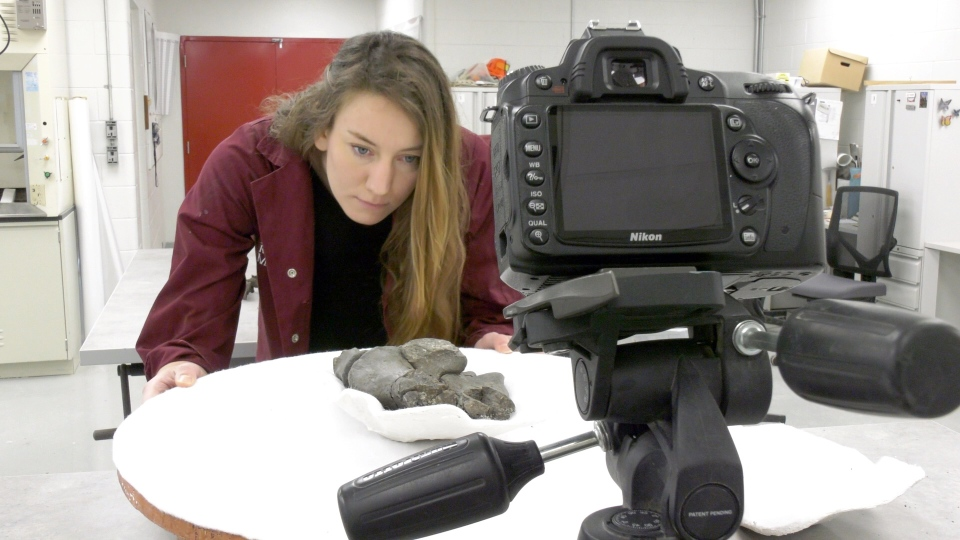 Amy Kowalchuk is the preparation and 3D technician at the Royal Tyrrell Museum.