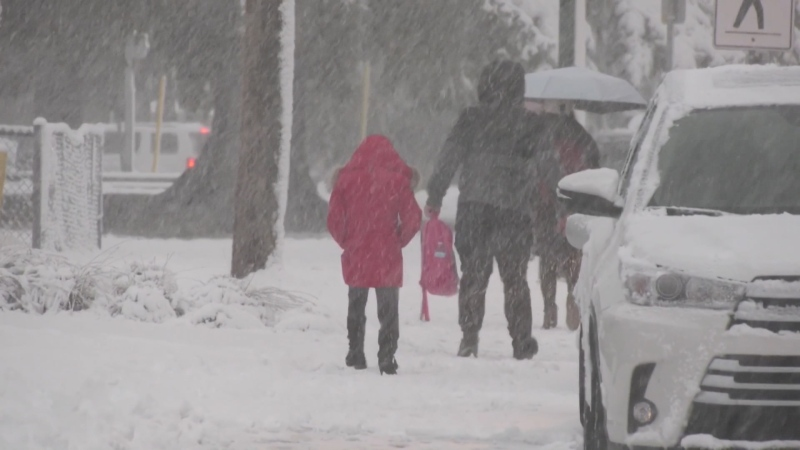 Student walking to school in the snow in Metro Vancouver. (File photo)
