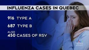 Quebec's flu season is in full swing