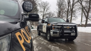 Southern Georgian Bay OPP is investigating an attempted sexual assault at Little Lake Park in Midland.  Jan. 15, 2020 (Steve Mansbridge/CTV News)