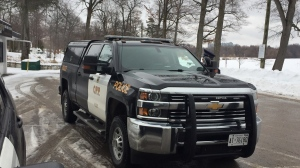 An OPP cruiser seen here on Jan. 15, 2020 (Steve Mansbridge/CTV News)