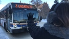 Regina Transit drivers will stop for anyone who holds out their hand in an emergency as part of their Safe Bus program (Twitter: City of Regina)