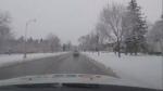 Thursday morning snow blankets Ottawa