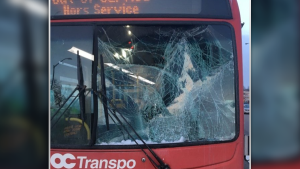 An OC Transpo driver was injured when ice flew off another vehicle and struck the windshield of the bus. (OPP)