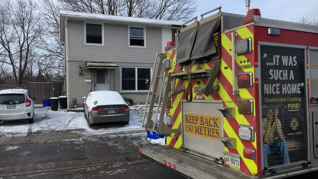 Four cats believed dead as the result of a fire, dozens rescued