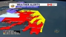Full Newfoundland weather forecast