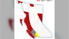 Weather warnings are in effect across all regions of Vancouver Island except for Greater Victoria: Jan. 17, 2020 (Environment Canada)