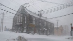 The streets were quiet in St. John's on Friday, January 17, 2020 as a major winter storm brought the city to a standstill. THE CANADIAN PRESS/Andrew Vaughan