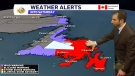 Here's the weather in Newfoundland
