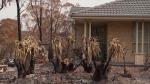 CTV National News: Australia rain relief