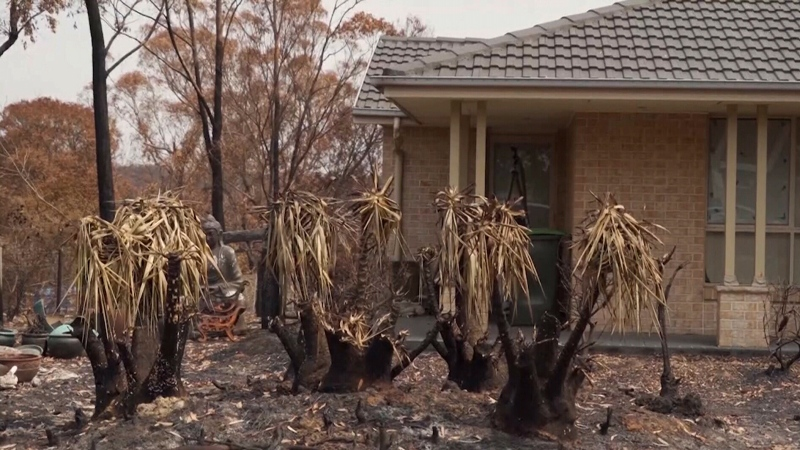 CTV National News: Australia rain relief
