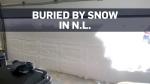 Record-setting snowfall blankets Newfoundland and