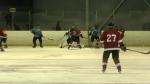 Hockey for Health Care