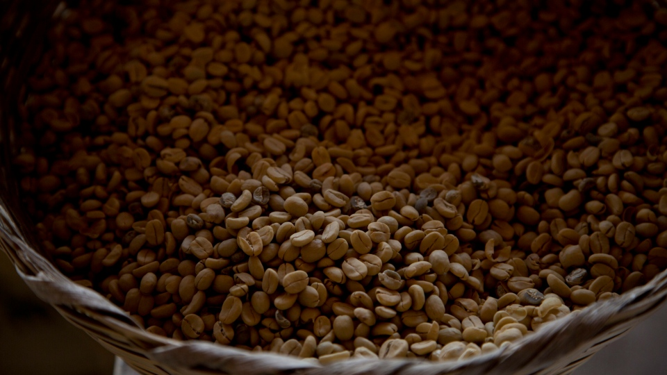 In this May 22, 2014 photo, coffee beans harvested last year are stored at a coffee plantation in Ciudad Vieja, Guatemala. (AP Photo/Moises Castillo)