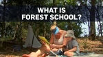 'Forest schools' giving kids the chance to explore