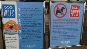 As of March 1, Hillside Centre will no longer welcome dogs to come inside with their owners. Signs posted inside the mall attribute the change to guests failing to follow the rules set out for canine visitors. (CTV)