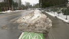 Lower Mainland deals with melting snow