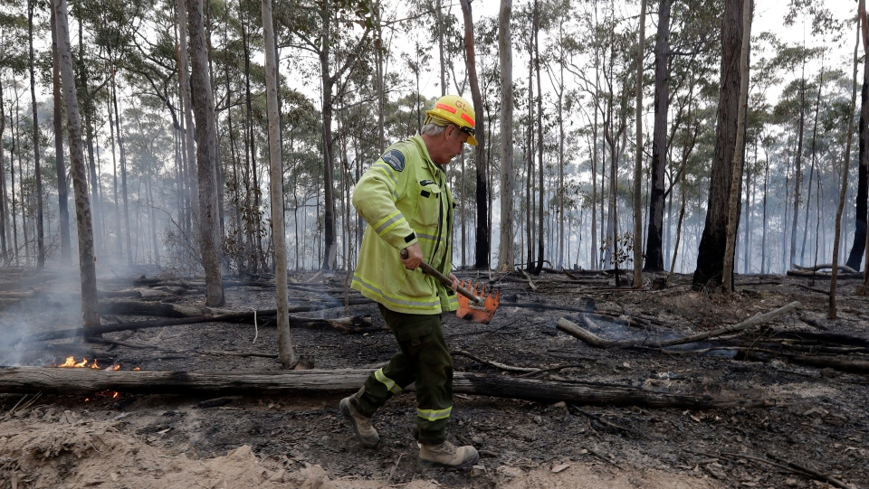 Forestry Corportaion worker Dale McLean patrols a controlled fire as they work at building a containment line at a wildfire near Bodalla, Australia, Sunday, Jan. 12, 2020. (AP Photo/Rick Rycroft)