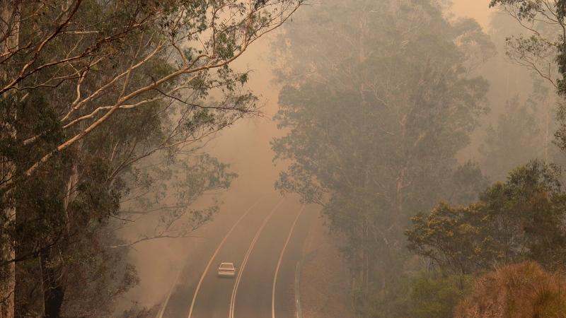 Smoke from wildfires shrouds a road near Moruya, Australia, Saturday, Jan. 4, 2020. THE CANADIAN PRESS/AP, Rick Rycroft
