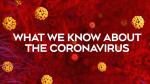 What we know about the novel coronavirus
