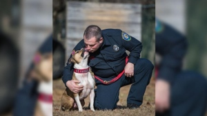 Hansel, a pit bull rescued from a dog fighting ring in Ontario, is believed to be the first arson-detection K9 officer of his breed in the U.S. (CNN)