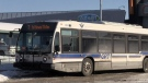 A Grand River Transit bus seen in this file photo.