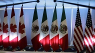 National flags representing Canada, Mexico, and the U.S. are lit by stage lights at the North American Free Trade Agreement, NAFTA, renegotiations, in Mexico City, Tuesday, Sept. 5, 2017. Senators on Capitol Hill have finally approved the latest version of North America's free trade pact. THE CANADIAN PRESS/AP/Marco Ugarte