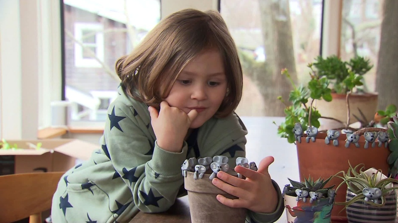 Six-year-old Owen Colley is making small clay koalas for Australian wildlife relief. (WBZ)