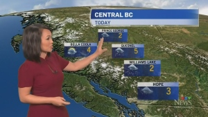 Tuesday weather with Ann