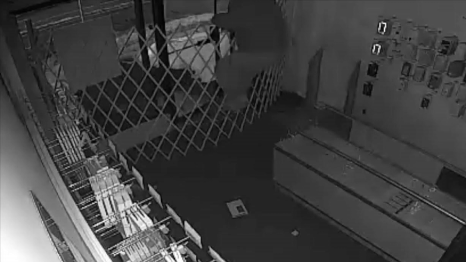 A still image from video shows an alleged crook trying to climb over a security fence inside a store in Surrey, B.C.
