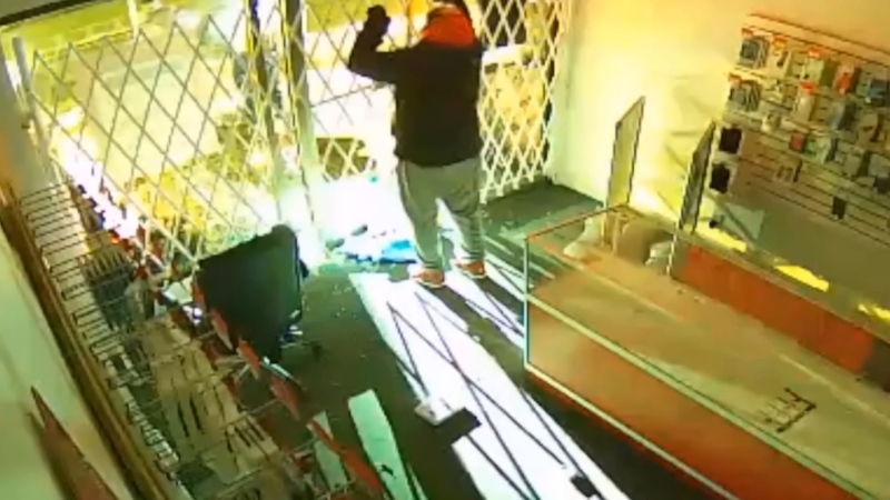 Caught on camera: Alleged thief traps himself