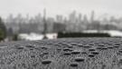 Metro Vancouver rain beading on top of a car. (Raj Prasad photo)